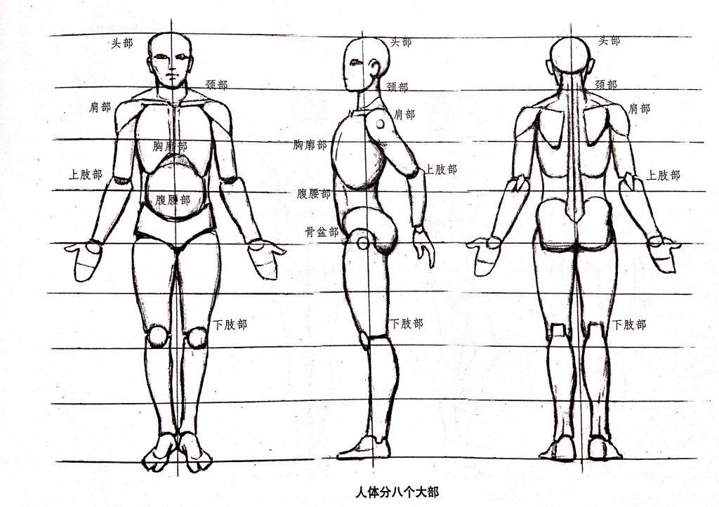 人体小知识2