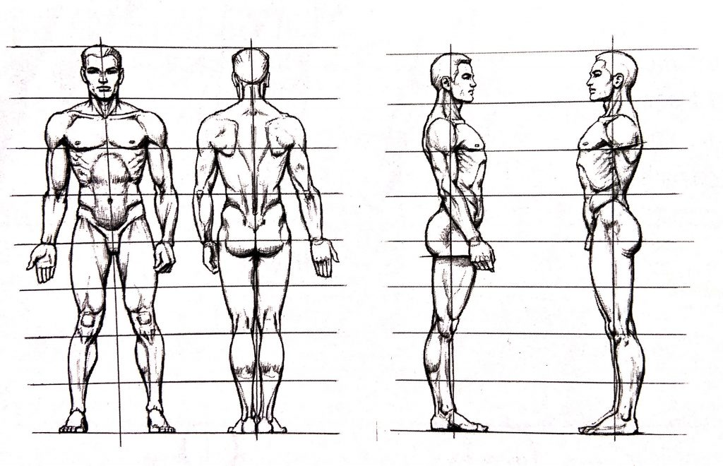人体小知识3