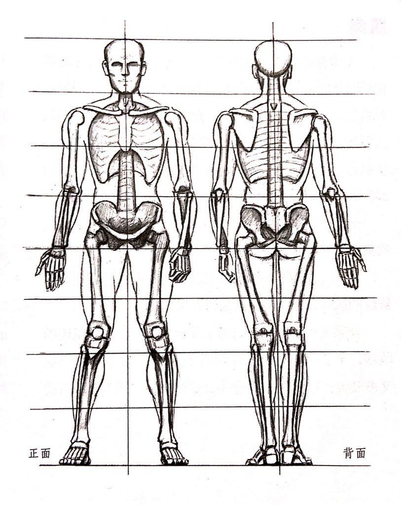 人体小知识5
